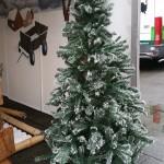 Kerstboom zijn te huur bij Carpe Diem Events & Verhuur uit Limburg.